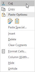 گزینه Cut در نرم افزار اکسل