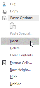 گزینه Insert در نرم افزار Excel